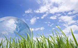 Refrigerante ecológico>